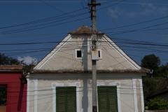 20100809_152544_Canon EOS 7D